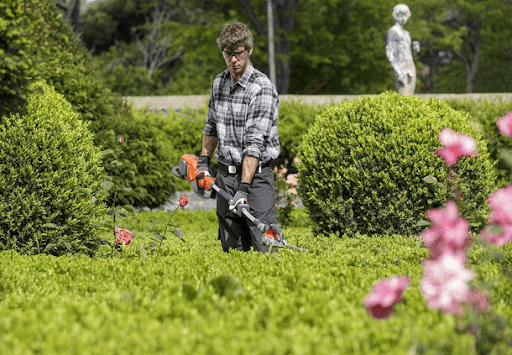 landscaping and lawn maintenance experts