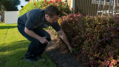 top rated commercial landscaping company
