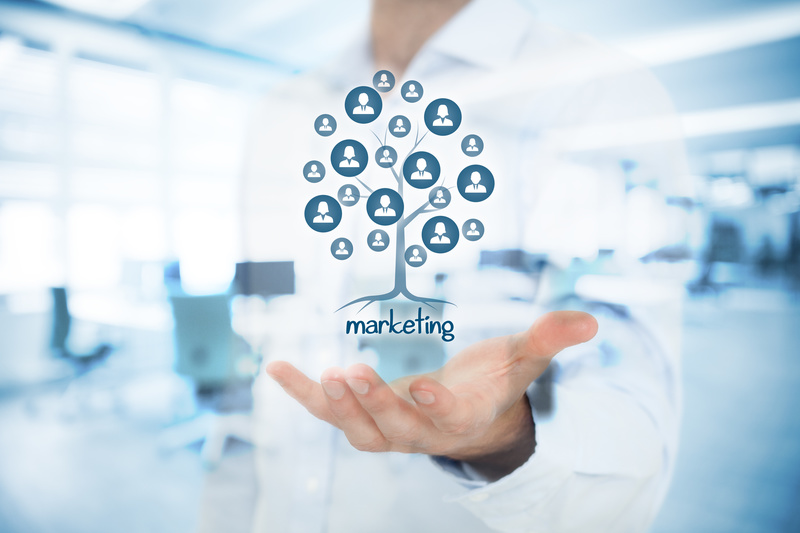 Online Marketing Systems
